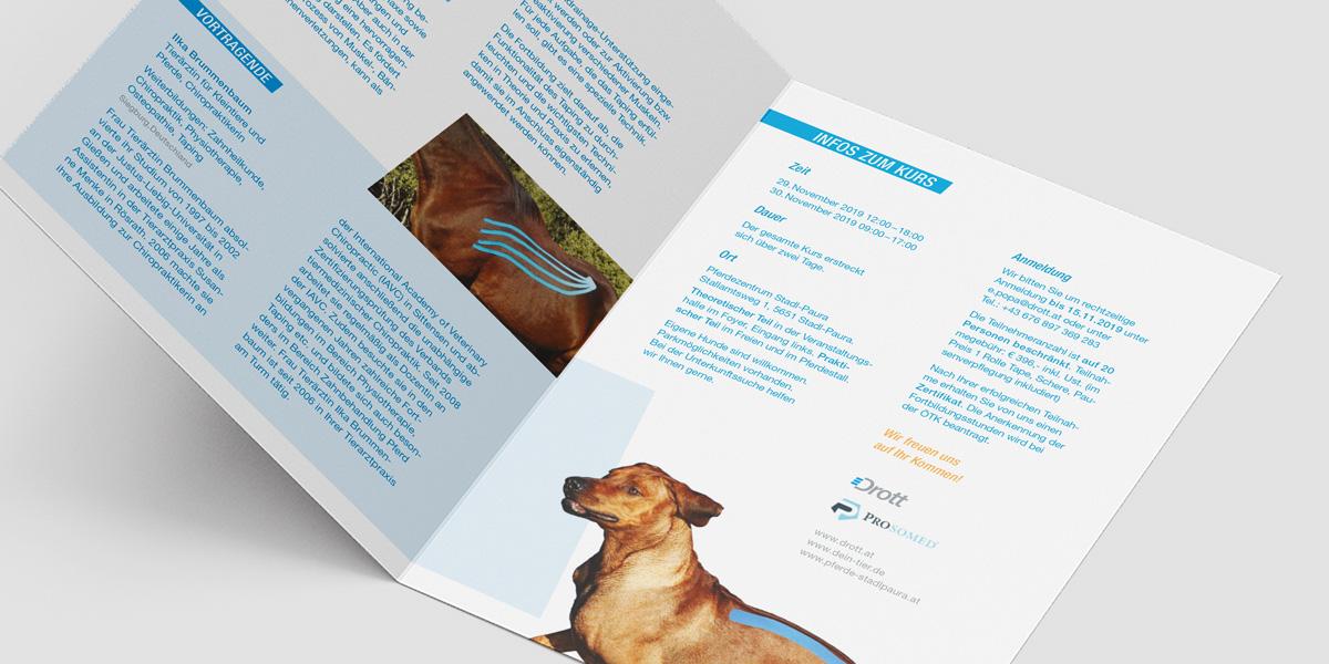 Drott_Mockup_Einladung_Folder_Tiertaping_02